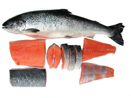Sehatnya Daging Ikan Mas dengan Resep Spesial